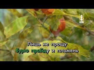 Валентина Толкунова - Я Не Могу Иначе караоке